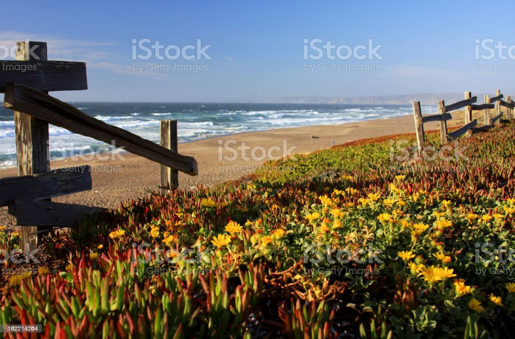 Beautiful California beach scene and old fence stock photo