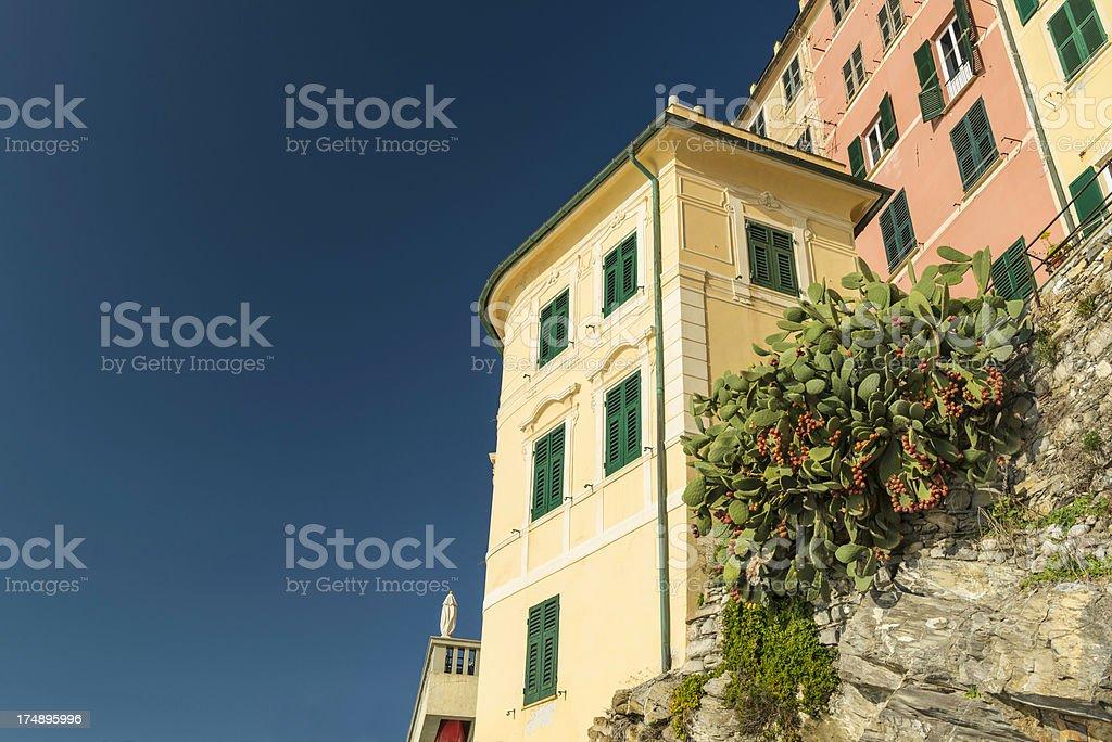 Beautiful Camogli royalty-free stock photo