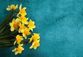黄水仙の花の黄色と美しいカード
