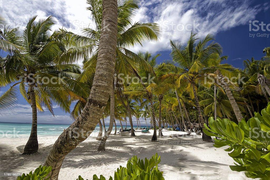 Hermosa playa Caribe - foto de stock