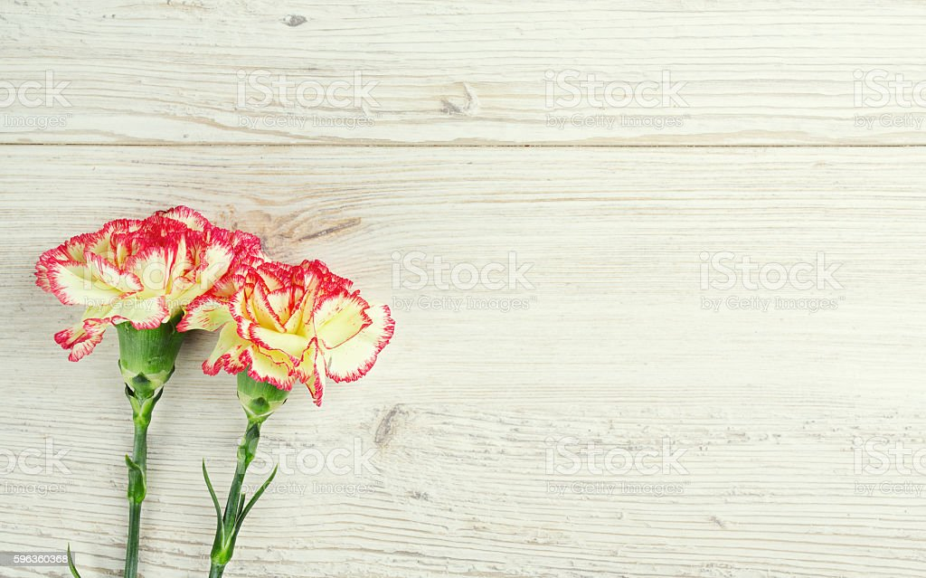 beautiful carnation flowers on wooden surface royalty-free stock photo