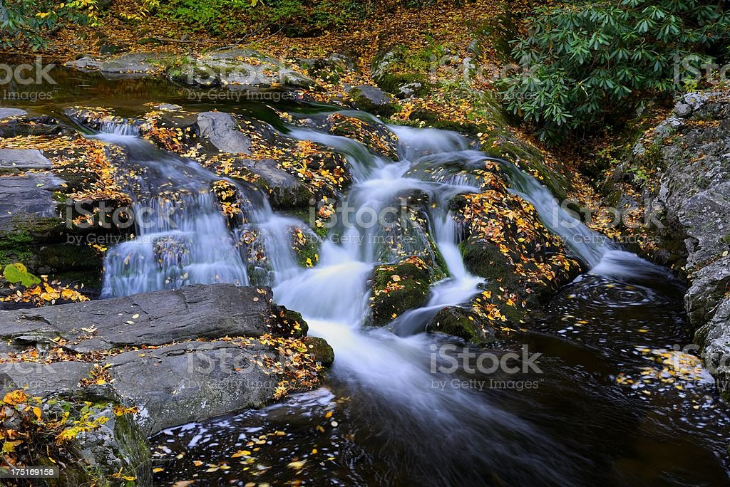 Beautiful Cascade in the Great Smoky Mountains royalty-free stock photo