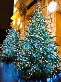 Beautiful Christmas tree, in Paris - France