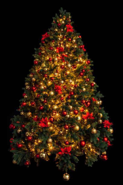 Beautiful christmas tree picture id865922796?b=1&k=6&m=865922796&s=612x612&w=0&h=8xnq xkt9j qa1hrgtw4c4mxrbzr 0c3iqu9larohku=