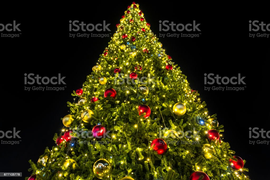 Beautiful Christmas Tree With Lights Glowing Stock Photo & More ...