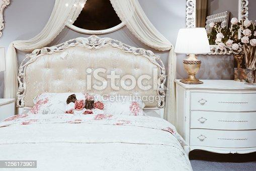 beautiful classic bedroom interior in white color