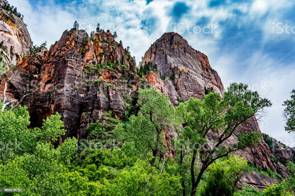 Beautiful Cliffs and Rock Formations in Zion National Park. - Royalty-free Canyon Stock Photo