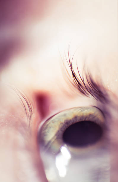 A beautiful closeup of a multicolored human eye with a shallow depth of field. stock photo