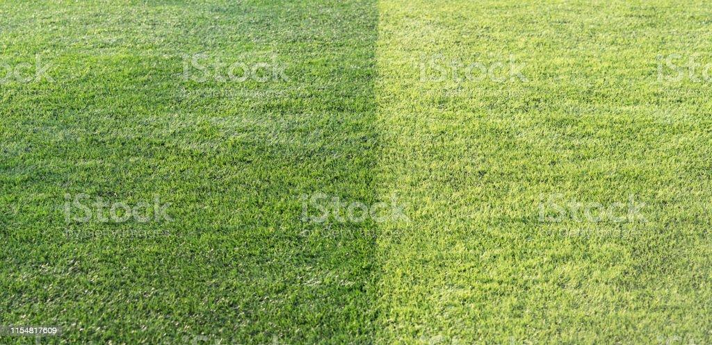 Beautiful closeup of fresh green grass for football sport, football...