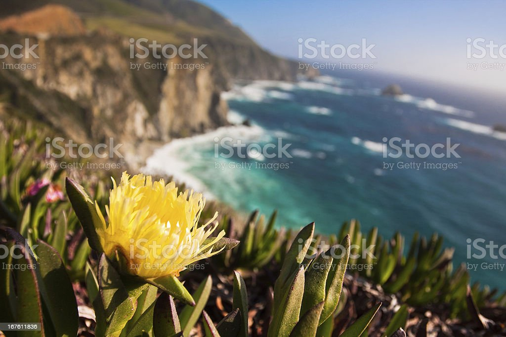 Beautiful Coastline Of Big Sur, California stock photo