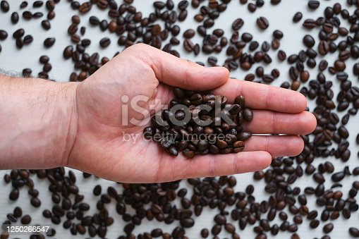 istock Beautiful coffee beans in the hands of a barista. Ready to brew roasted coffee. A man in a culinary apron. Fresh organic coffee. Enjoy the aroma. Making coffee, professional service 1250266547
