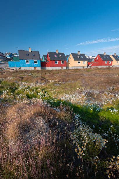 Beautiful colorful houses in Ilulissat,  Greenland stock photo