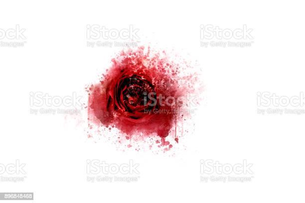 Beautiful colorful rose flower on watercolor painting background picture id896848468?b=1&k=6&m=896848468&s=612x612&h=q5hsr8bdy7sor7miklovoz2veskxm8k70felnxt j e=