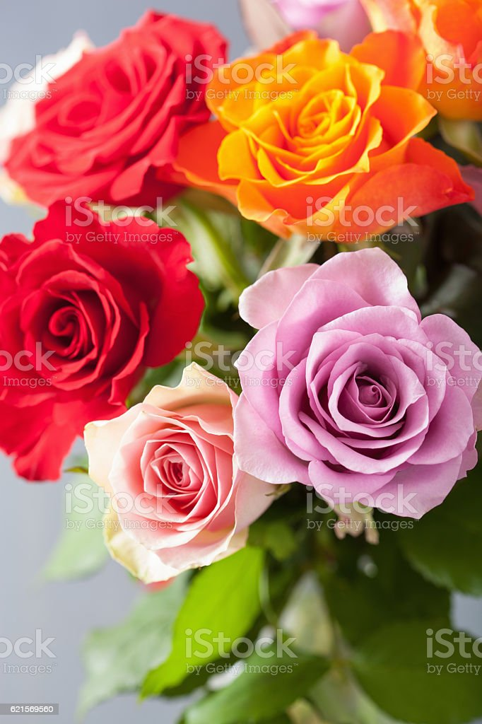 beautiful colorful rose flowers bouquet foto stock royalty-free