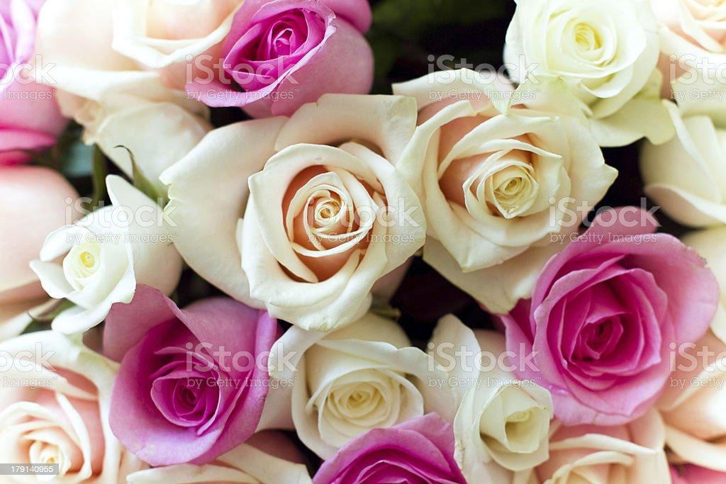 Beautiful colorful roses bouquet royalty-free stock photo