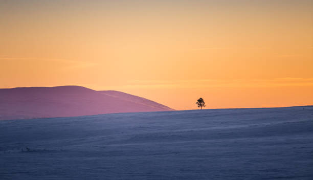 A beautiful colorful winter sunset in a central Norway. stock photo