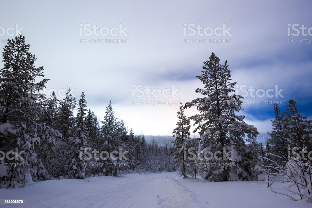 Beautiful colors in the sky pre dawn in Finland covered in snow stock photo