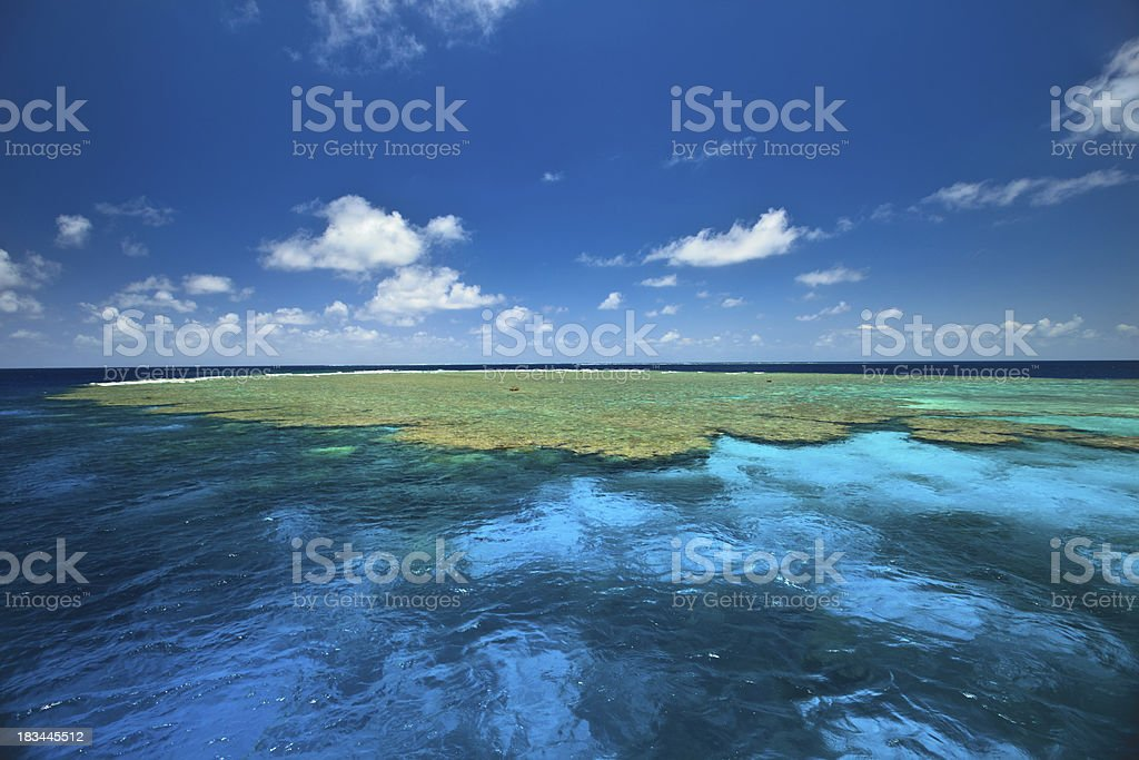 Beautiful colors of Clam Gardens Great Barrier Reef Australia royalty-free stock photo