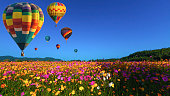 istock Beautiful colors of the hot air balloons flying on the cosmos flower field at chiang rai thailand 1246842527