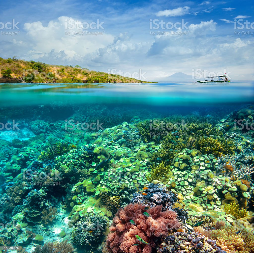 Beautiful Coral reef on background of cloudy sky and volcano. stock photo