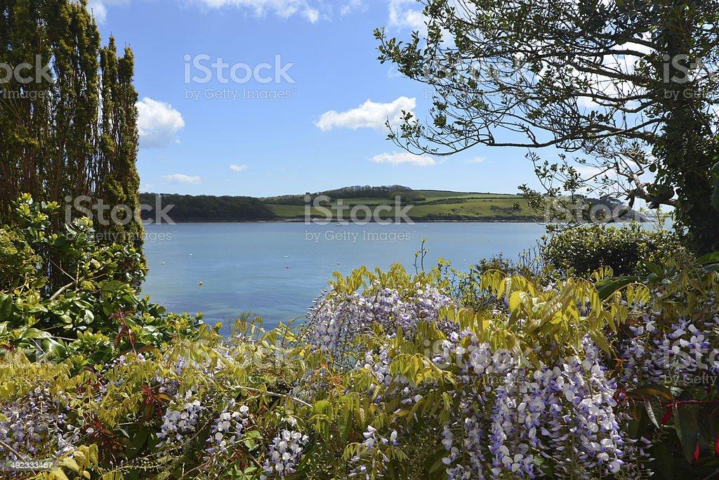 Beautiful Cornwall royalty-free stock photo