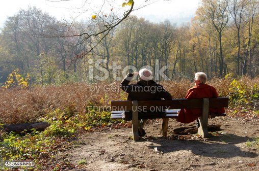 istock Beautiful country view 458233221