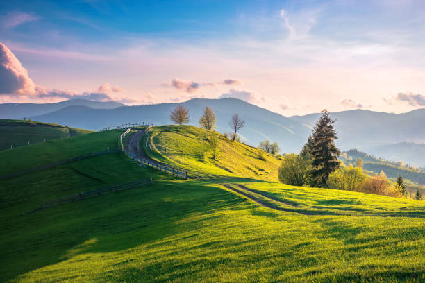 beautiful countryside in mountains at sunset stock photo