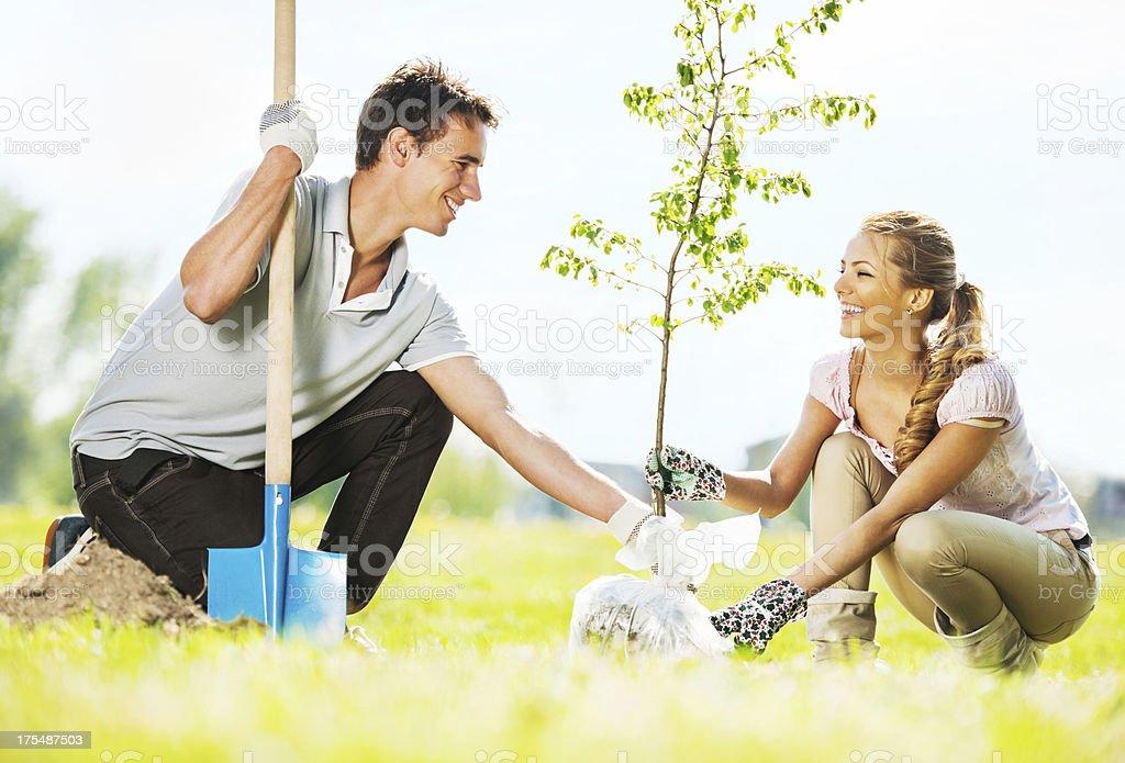 Beautiful couple planting a tree. stock photo