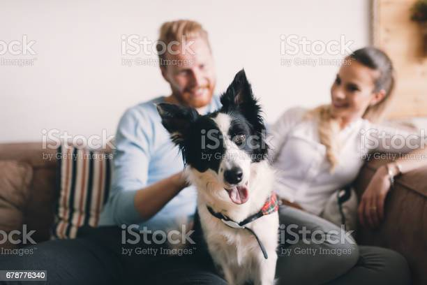 Beautiful couple relaxing at home and loving their pet picture id678776340?b=1&k=6&m=678776340&s=612x612&h=behocvdiriqkwndjgcpciycff wgvfcr1cylnut3r1q=