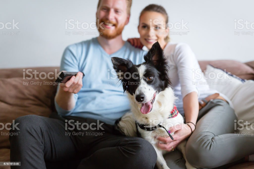 Beautiful couple watching television at home with their dog on sofa royalty-free stock photo