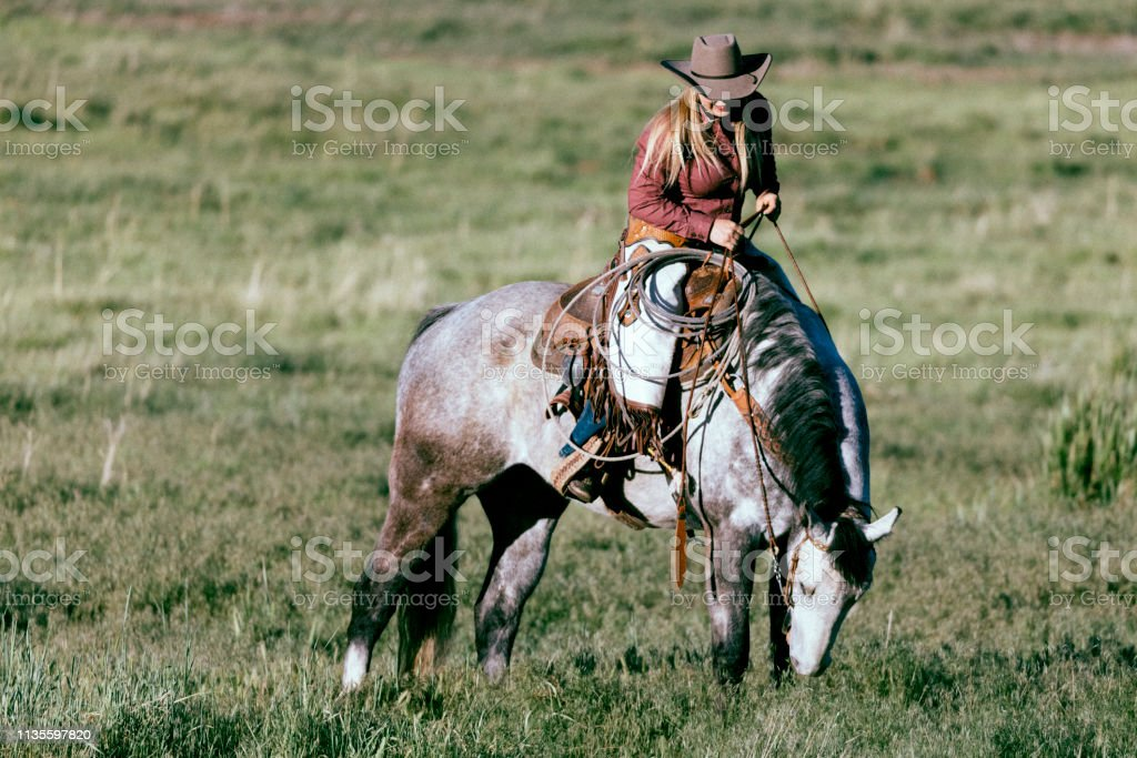 Beautiful Cowgirl Riding Her Horse In A Utah Field Stock Photo Download Image Now Istock