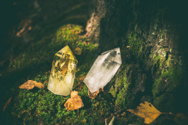 Beautiful crystals in the forest, crystal healing Beautiful, magical crystals standing in the forest. crystal healing stock pictures, royalty-free photos & images