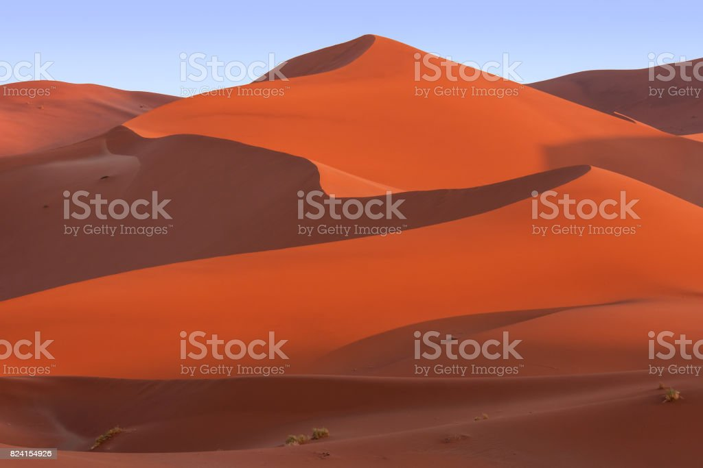Beautiful curves and lines of large red sand dunes in Sossusvlei, Namib Desert, Namibia. stock photo