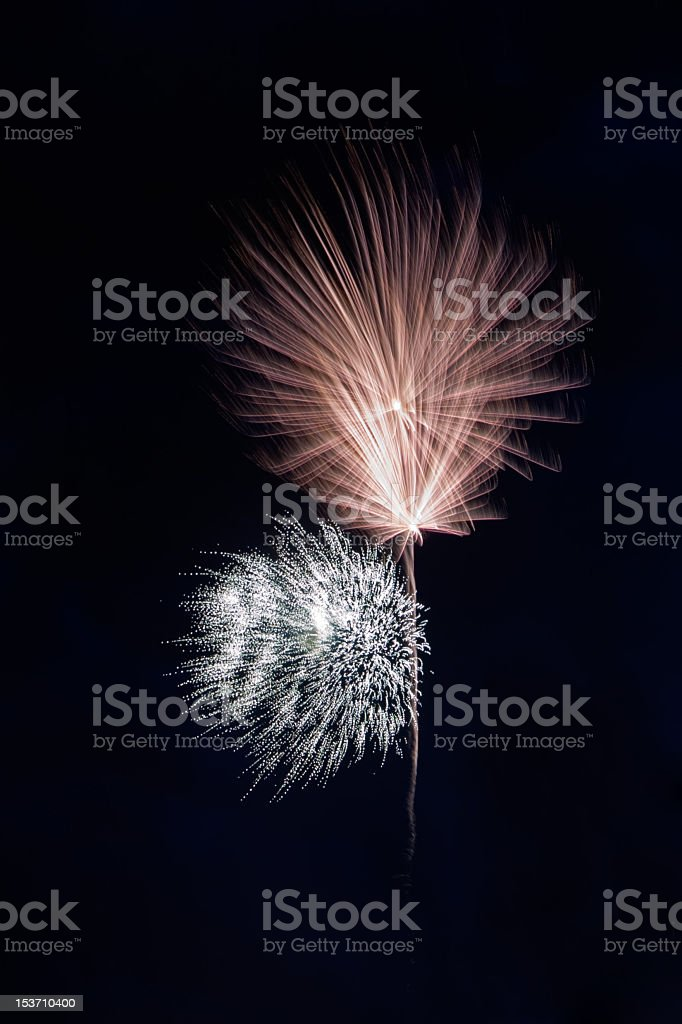 Beautiful dandelion-shaped fireworks on the black night sky background royalty-free stock photo