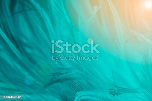 istock Beautiful dark green turquoise vintage color trends feather pattern texture background with Orange light 1069087642