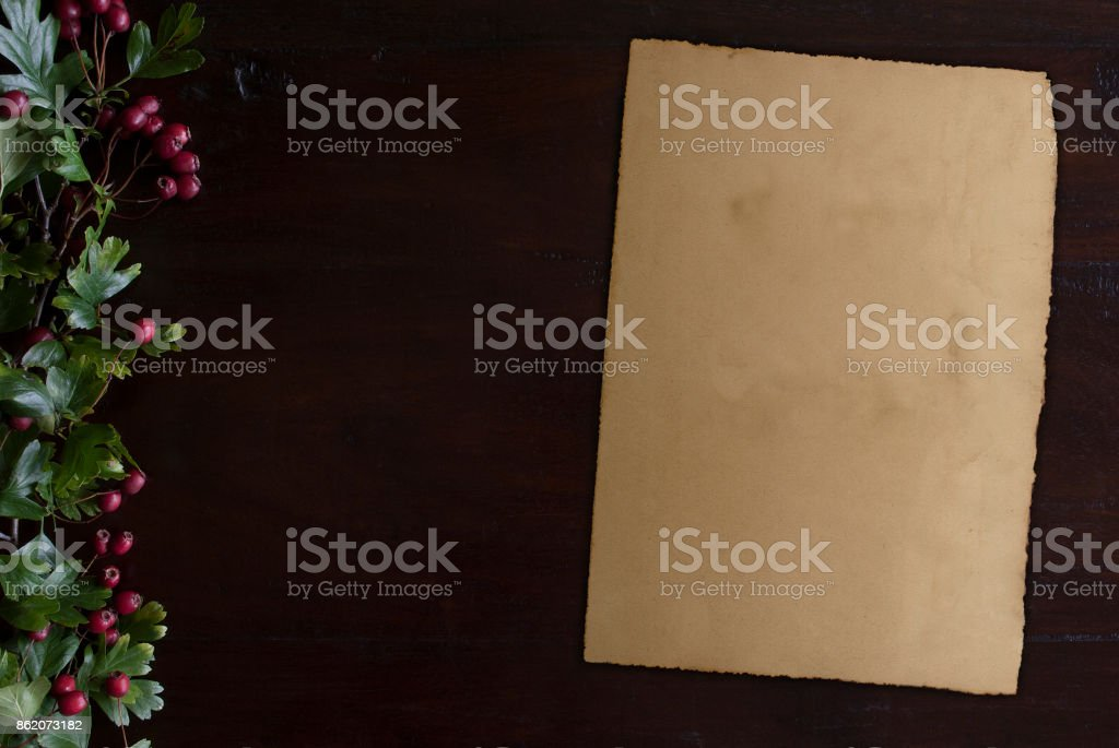 beautiful dark wooden background with hawthorn foliage border at left side and vintage paper sheet stock photo