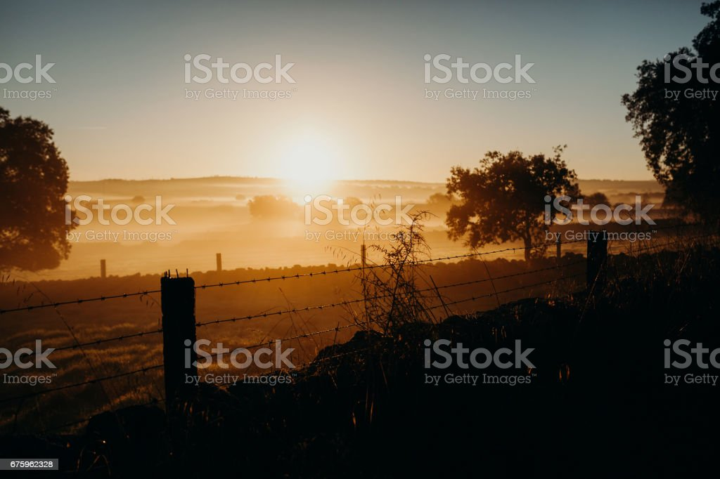 Beautiful dawn landscape, with barbed wire fences dividing land. stock photo