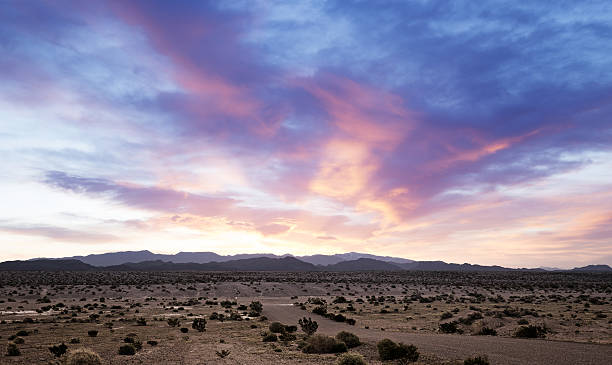 beautiful dawn on a desert landscape in southern california beautiful dawn on a desert landscape in southern california mojave desert stock pictures, royalty-free photos & images
