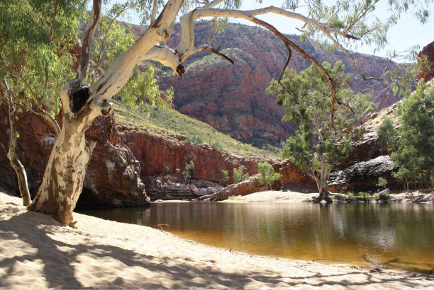 Beautiful day at Ormiston Gorge, Central Australia stock photo