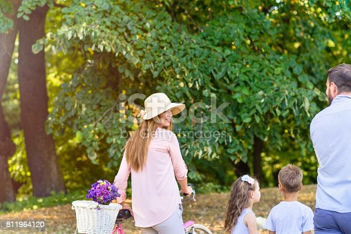 658444674istockphoto Beautiful day for a walk in the forest 811964120