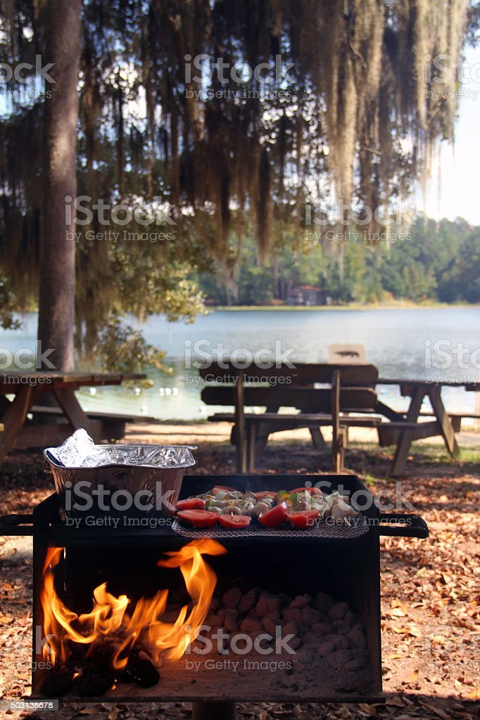 Beautiful day for picnicing out door by the lake stock photo