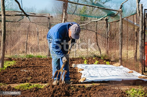 Beautiful Day in Spring at Country Garden With Senior Man Weeding with Pitchfork - Stock Photo