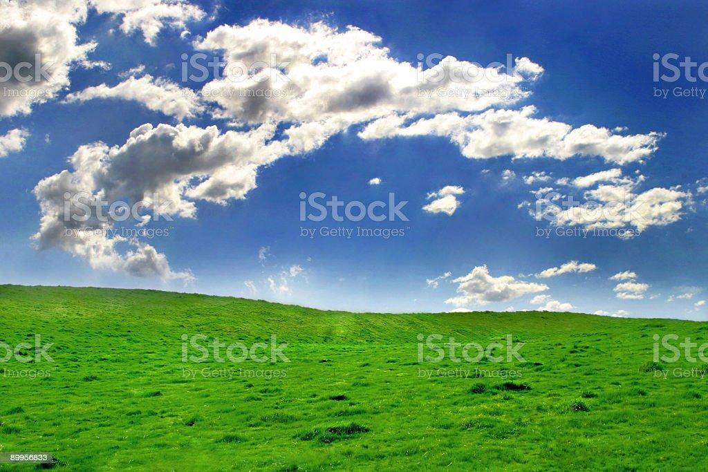 Beautiful Day royalty-free stock photo