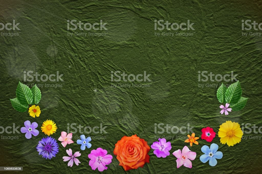 Beautiful decoration flowers frame with empty in center on lime rough stucco background. Floral composition of spring or summer flowers. stock photo