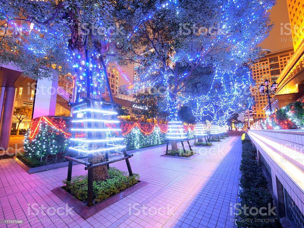 Beautiful decoration on trees royalty-free stock photo