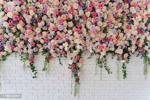 Beautiful Decorative Colorful Roses on Brick Wall. Wedding Party Decor Detail. Delicate Clambering Plant Blossom Pastel Flower on White Background. Elegant Arrangement Floristics Setting