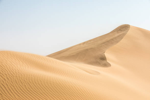 beautiful desert landscape in early morning. - sand dune stock photos and pictures