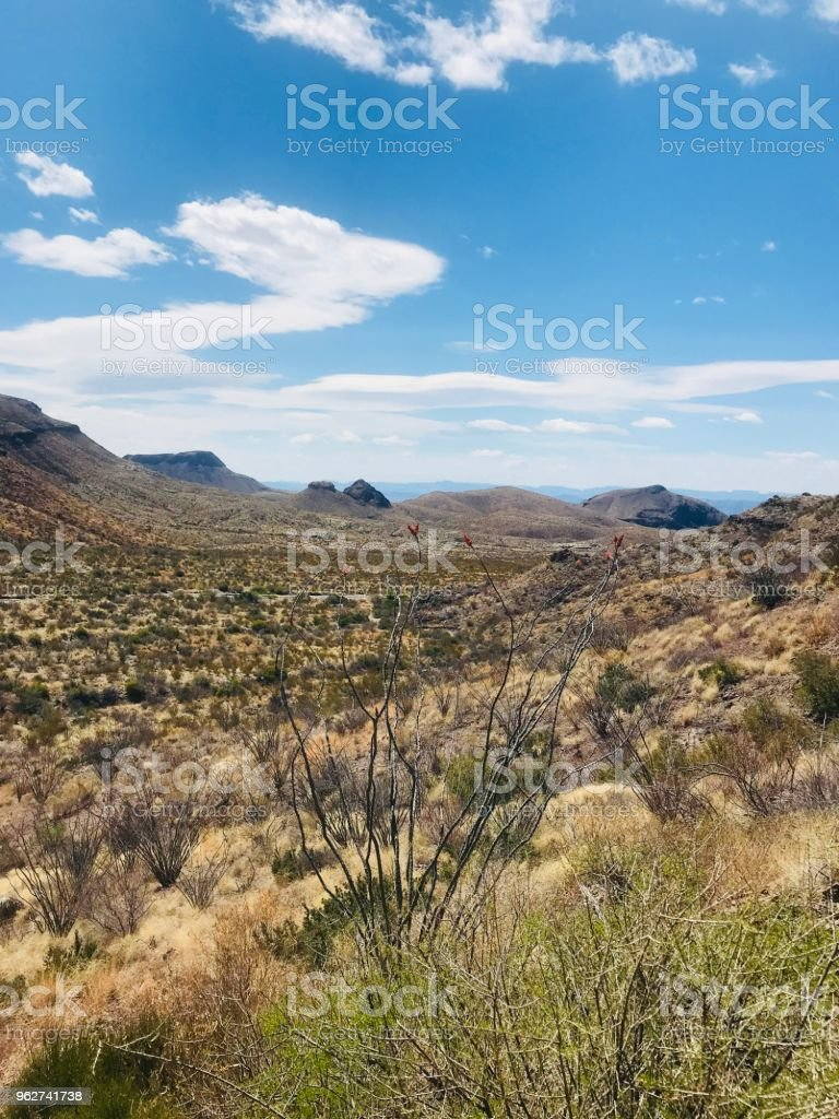 Beautiful Desert - Foto stock royalty-free di Ambientazione esterna