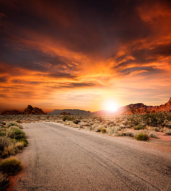Beautiful Desert Road At Sunset Beautiful desert Road at sunset. Large composite. middle of the road stock pictures, royalty-free photos & images