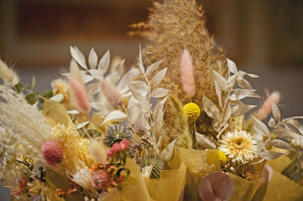 Schöne getrocknete Blumen und Blätter – Foto